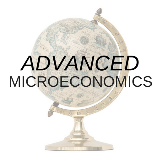 Advanced Microeconomics